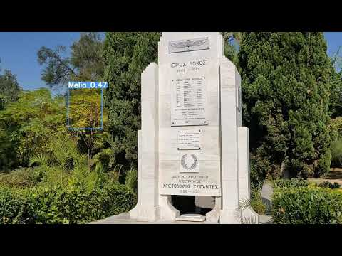 """VR-Park A.I. – Plant species identification in """"Pedion Areos"""" park (test video 3)"""