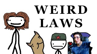 Weird Laws from Around the World By Sam O'Nella Academy Reaction