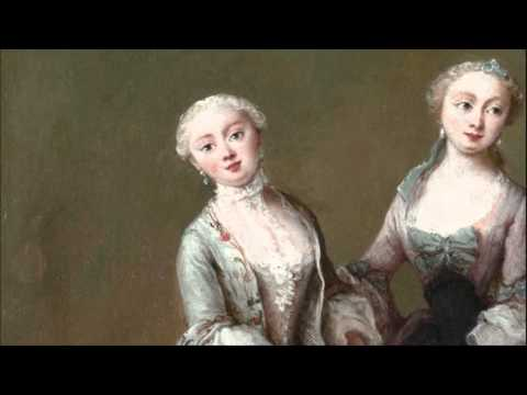 Anonymous: Concerto for viola d'amore, 2 flutes, strings & b.c. in B major (Poland, 1750 c.)