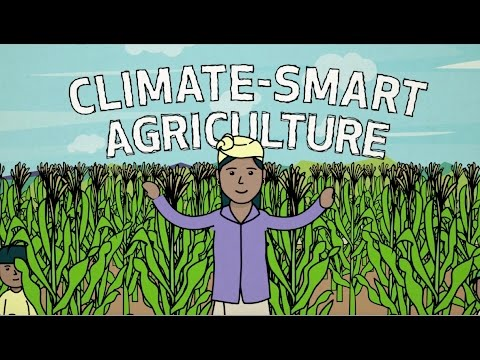 How Digital Farming Will Help Feed the World and Protect the