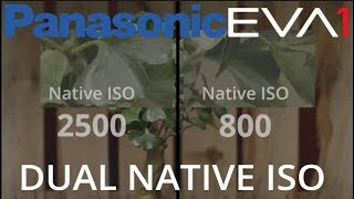 Panasonic Dual Native ISO Explained