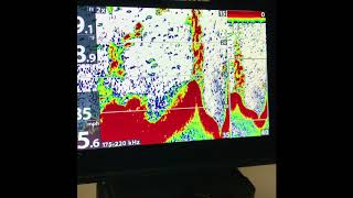 Humminbird Helix sensitivity settings