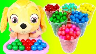 Color Learning with Paw Patrol Sky on School Bus Gumballs | Teacher Ellie Sparkles Pt 1 - Video Youtube