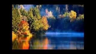Aaron Neville - This magic moment/True love (241)