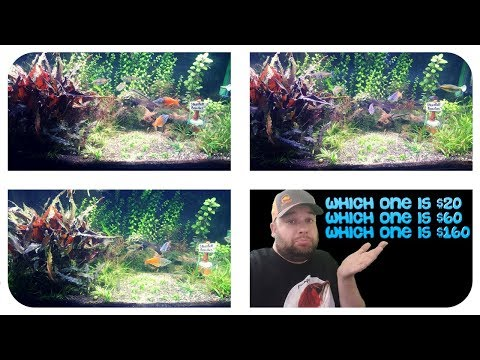 LED LIGHT COMPARISON: Finnex, Fluval, Aquaneat – New Plants – A Day in the Fishroom