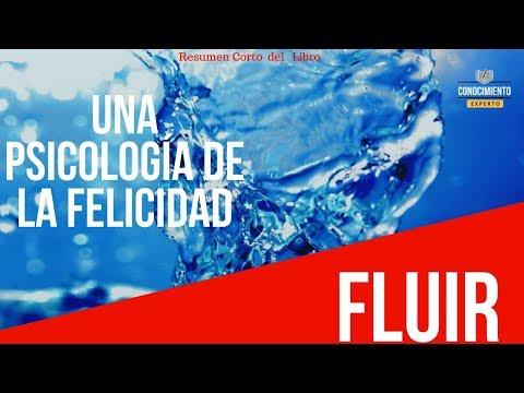 Reseña del libro - Fluir (Flow)
