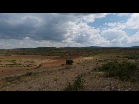 CELADAS DE POZONDÓN (Teruel - Aragón)