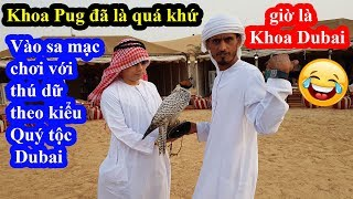 Thú vui quý tộc Dubai - Cười xỉu với Mohammed Khoa Pug vào sa mạc chơi với thú dữ
