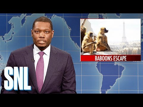 Weekend Update on Baboons Escaping Paris Zoo - SNL