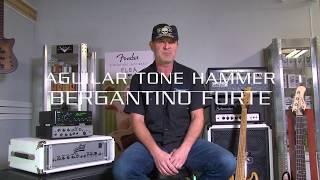 Bass Club Chicago Shootout - Bergantino Forte vs Aguilar Tone Hammer 500