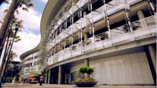 Sydney Casino - Hotel Accommodation&Restaurants | The Star
