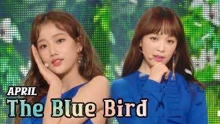[Comeback Stage] APRIL - The Blue Bird, 에이프릴 - 파랑새 Show Music core 20180317