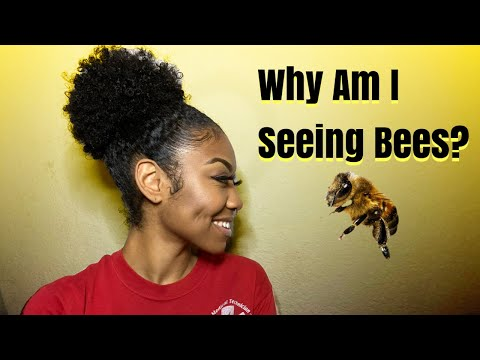BEES?   WHY Am I Seeing Bees?   BABY?   SUCCESS