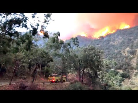 Southern California's Thomas Fire roars back to life