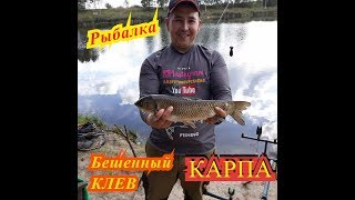 Рыбалка клин новоселки