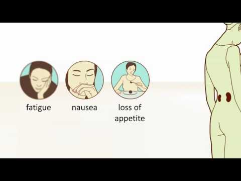 Giardia สามารถขับออกมาในปัสสาวะ