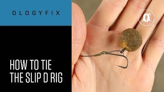 CARPologyTV   How To Tie The Slip D Rig