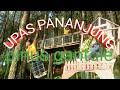 UPAS PANANJUNG || wisata hutan pinus gantole yang sejuk