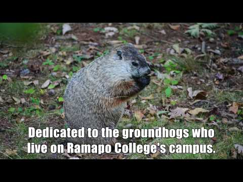 When It's Groundhog Day at Ramapo College ...