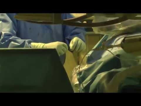 Prostata cane esame del sangue