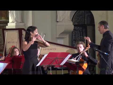 koncertas rudens serenados fragmentai