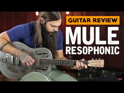 Mule Resophonic ★ Guitar Review