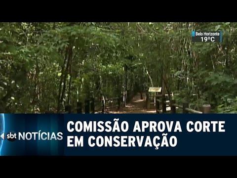 Comissão aprova redução de três unidades de conservação