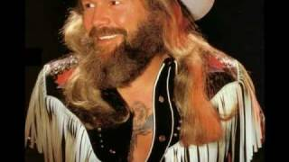 David Allan Coe - Another Pretty Country Song
