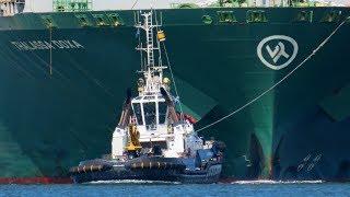 Shipspotting  Europoort 08 2018