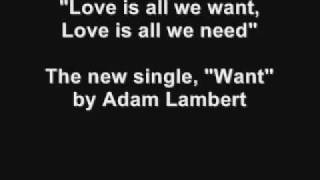 Adam Lambert- Want