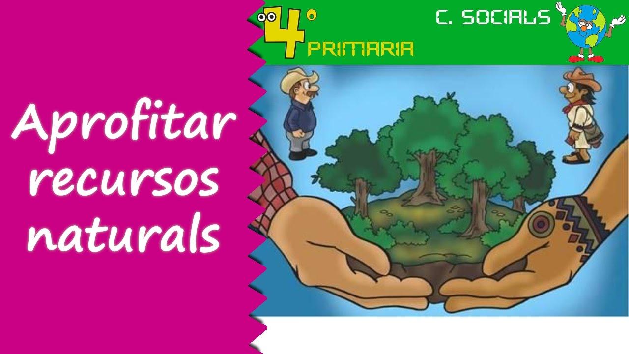 Ciències Socials. 4t Primària. Tema 4. Aprofitament dels recursos naturals