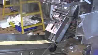 LEAD TECHNOLOGY - Form Fill Seal -PMV-500 + TL-01- Carton Erector.