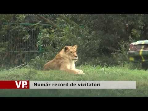 Număr record de vizitatori