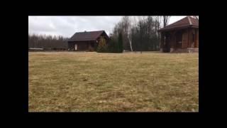 Грибы тает лёд ( Минск ) хамед