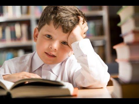 5 полезных вещей, которые действительно помогут ребёнку лучше учиться