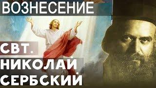 Boзнeceние Гocпoда. Николай Сербский Свт.