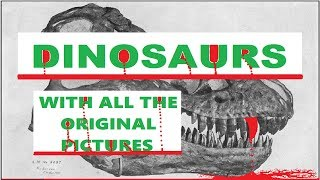 AUDIOBOOK - DINOSAURS (With The Original Pictures) - 1915 - Video Youtube