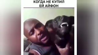 Смешные видео из интернета. Популярное в России. Юмор НОВОЕ!