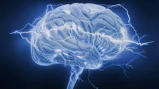 Можно ли с помощью мозга познать мозг? Расказывает академик Святослав Медведев