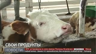Свои продукты. Новости. 12/02/2021. GuberniaTV