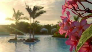 Norwegian Cruise Line: Harvest Caye