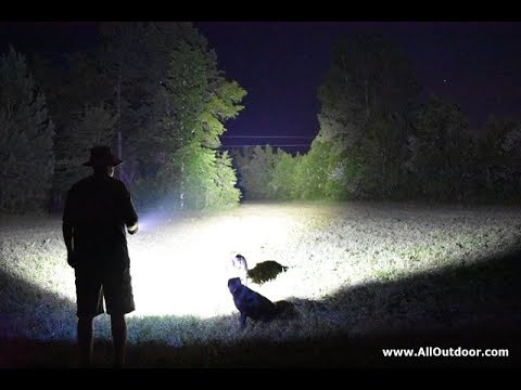 Olight R50 Pro Seeker Flashlight Review