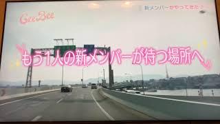 花のち晴れ愛莉役今田美桜福岡時代テレビ初登場シーン