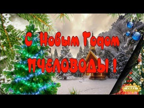 С НОВЫМ ГОДОМ! ПЧЕЛОВОДСТВО ЗИМОЙ! :)))