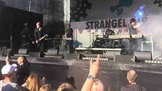Apoptygma Berzerk - Fade to black(live) Strangel Air 2015