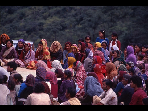 The Chipko movement as it stands today