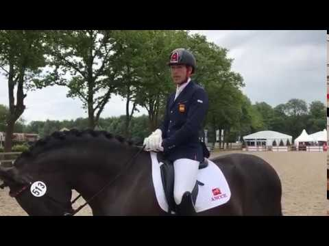 ANCCE | Statement by Spanish rider Guillermo Garcia Ayala upon concluding the test for 5-year olds at the World Breeding Dressage Championships for Young Dressage Horses (Ermelo 2017)