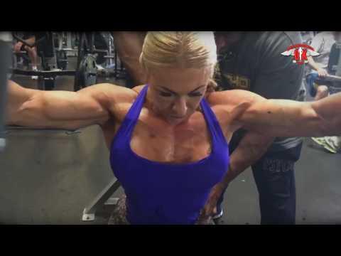 La structure du muscle latlas