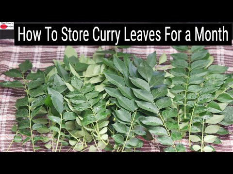 How To Store Curry Leaves For A Month | Skinny Recipes