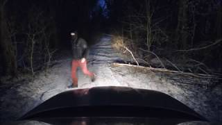 Why you shouldn't drive in the creepy  forest during full moon.